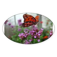 Orange Butterfly Oval Decal