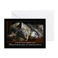 Pet Cat Sympathy Card, Loss Of Pet (Pk of 10)