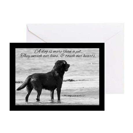 Pet Dog Sympathy Card - Touch Our Heart (Pk of 10)