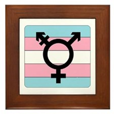 Transgender Equality Framed Tile