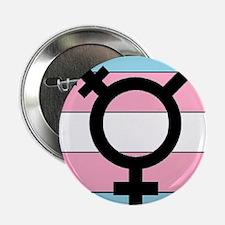 "Transgender Equality 2.25"" Button"
