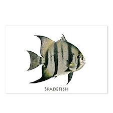 Spadefish Logo Postcards (Package of 8)