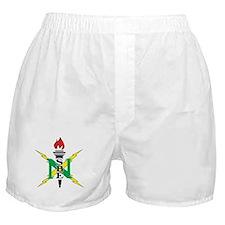 Cute Washington nationals Boxer Shorts