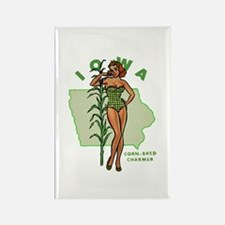 Faded Iowa Pinup Rectangle Magnet