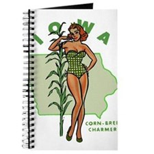Faded Iowa Pinup Journal
