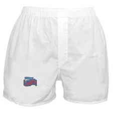 The Incredible Landyn Boxer Shorts