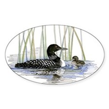 Loon and baby Decal