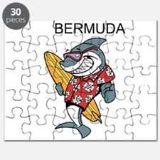 Bermuda Puzzle