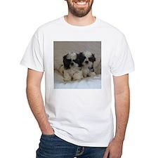 Two Shih Tzu Puppies T-Shirt