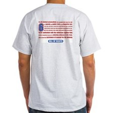 06 Team Ash Grey T-Shirt