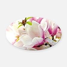 Sunlit Magnolias Oval Car Magnet