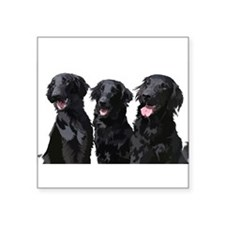 flatcoated retrievers Sticker