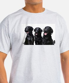 flatcoated retrievers T-Shirt