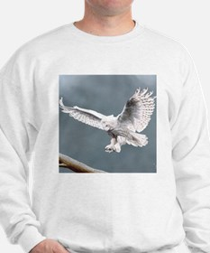 Snow Wings;  Sweatshirt