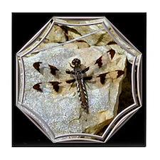 Dragonfly on Rock Black Tile Coaster