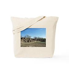 Ansasazi Indian Ruins Tote Bag