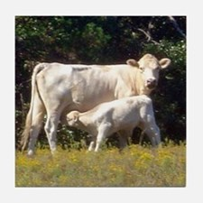 cow and calf Tile Coaster