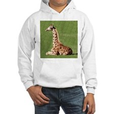 Baby Giraffe Hoodie