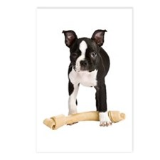 Boston Terrier Standing Guard Postcards (Package o