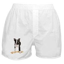 Boston Terrier Standing Guard Boxer Shorts