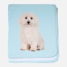 The Perfect Bichon Frise baby blanket