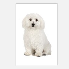 The Perfect Bichon Frise Postcards (Package of 8)