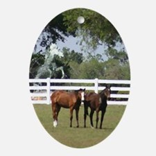 Two horses Oval Ornament