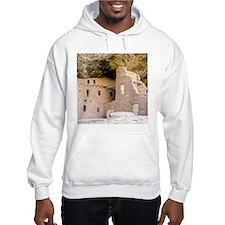 Cool Ancestral puebloans Hoodie