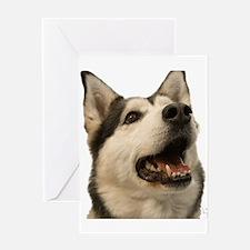 The Alaskan Husky Greeting Card