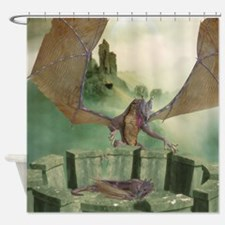 Dragon Land Shower Curtain
