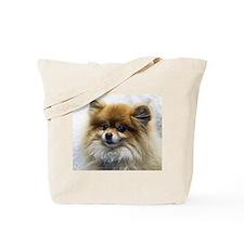 Pomeranian Cutie Tote Bag