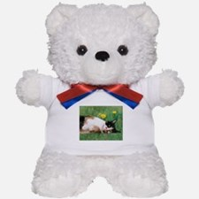 Bitsy Teddy Bear