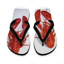 Twin Lobsters Merchandise Flip Flops