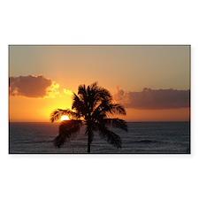 Paradise Palm Tree Decal