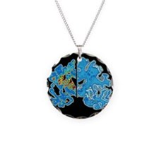 Unique Alzheimer's disease Necklace