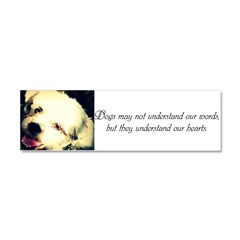 Dogs May Not Understand Our Words Car Magnet