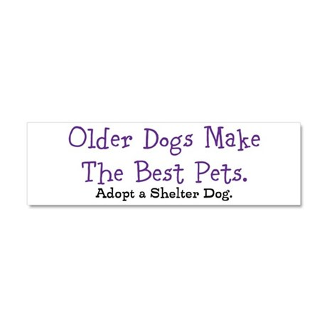 Older Dogs Make the Best Pets Car Magnet