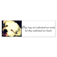 Dogs May Not Understand Our Words Bumper Bumper Sticker