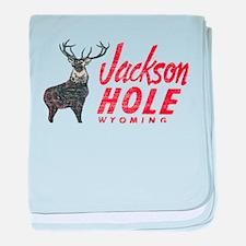 Vintage Jackson Hole baby blanket