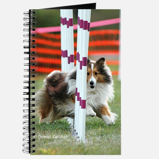Shetland Sheepdog Agility Journal
