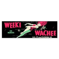 Weeki Wachee Vintage Replica Bumper Sticker
