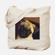 Adorable fawn pug puppy face Tote Bag