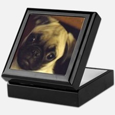 Adorable fawn pug puppy face Keepsake Box