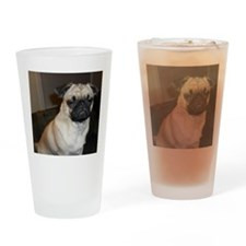Stink eye pug Drinking Glass