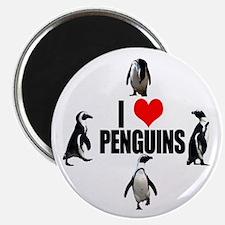 Cute Penguins love Magnet
