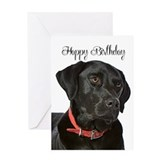 Labrador Greeting Cards