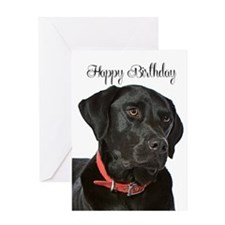 Black Lab Birthday Card