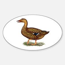 Mallard Duck Hen Decal