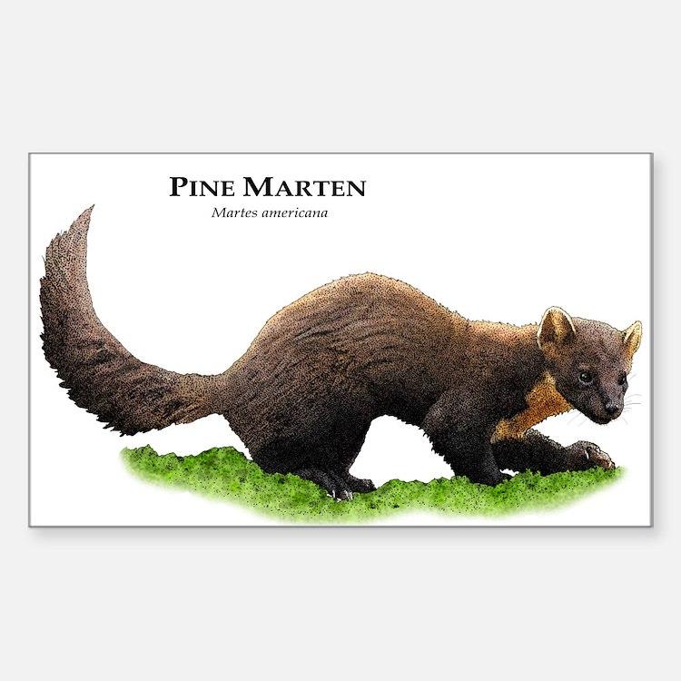Pine Marten Decal