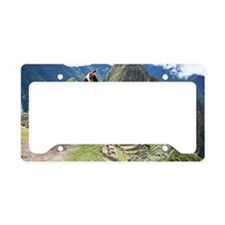 Ancient Inca lost city Machu  License Plate Holder